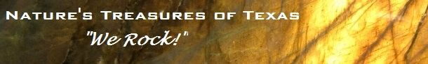 nt-rocks-logo-sponsor