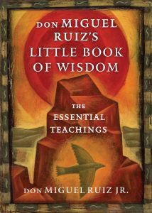 DMR Little Book of Wisdom Front Cover